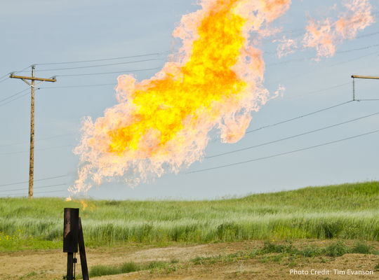 Natural gas flares from a flare-head at the Orvis State well on the Evanson family farm in McKenzie County, North Dakota, east of Arnegard and west of Watford City.